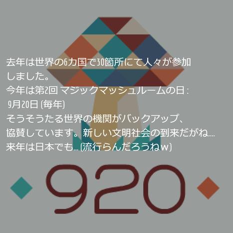 920 Coalition - Psilocybin Mushroom Events and Education | Ayahuasca  アヤワスカ | Scoop.it