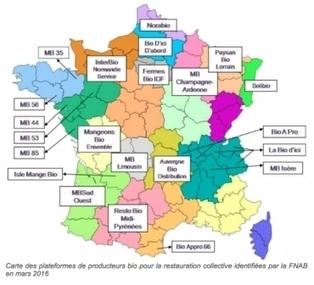 Cantines : le Sénat ne veut pas de bio pour vos enfants | Comprendre le réel intérêt de produire une agriculture BIO en France plutôt que d'importer des produits présentant un label pas vraiment Certifié. | Scoop.it