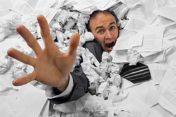 Chaos Can Destroy Your Small Business | Webworld | Scoop.it