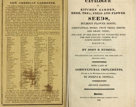 Biodiversity Heritage Library: Antique Seed Catalogs and Heirloom Gardening | Plant Biology Teaching Resources (Higher Education) | Scoop.it