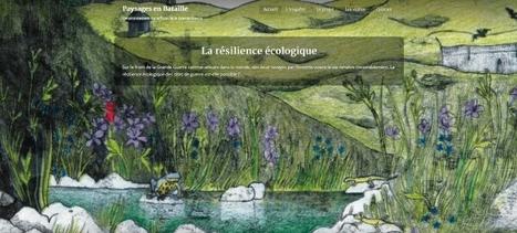 Cinq questions à... Paysages en bataille - En Envor | Nos Racines | Scoop.it