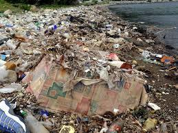 "EDITORIAL - Jamaica's obsession with garbage - Jamaica Gleaner (""citizens should own the problem"") 