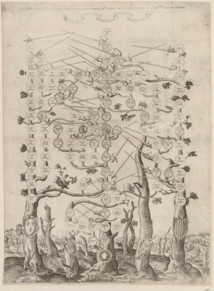 L'arbre généalogique, une image mathématique | Chroniques d'antan et d'ailleurs | Scoop.it