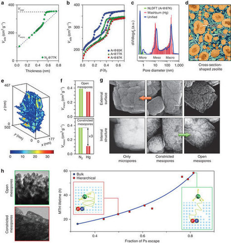 Structural analysis of hierarchically organized zeolites | Mineralogy, Geochemistry, Mineral Surfaces & Nanogeoscience | Scoop.it
