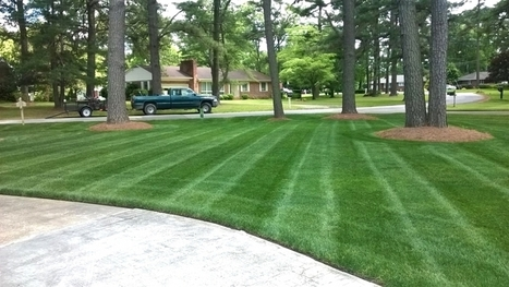 Early Spring Lawn Care Tips | Angies List | Gardening | Scoop.it