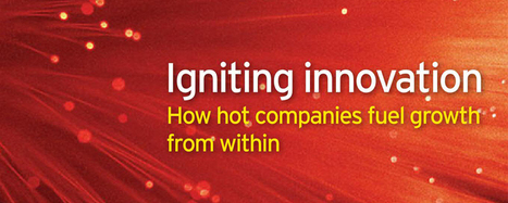 Igniting innovation: how hot companies fuel growth from within - Successful entrepreneurship | Balance: People & Business | Scoop.it
