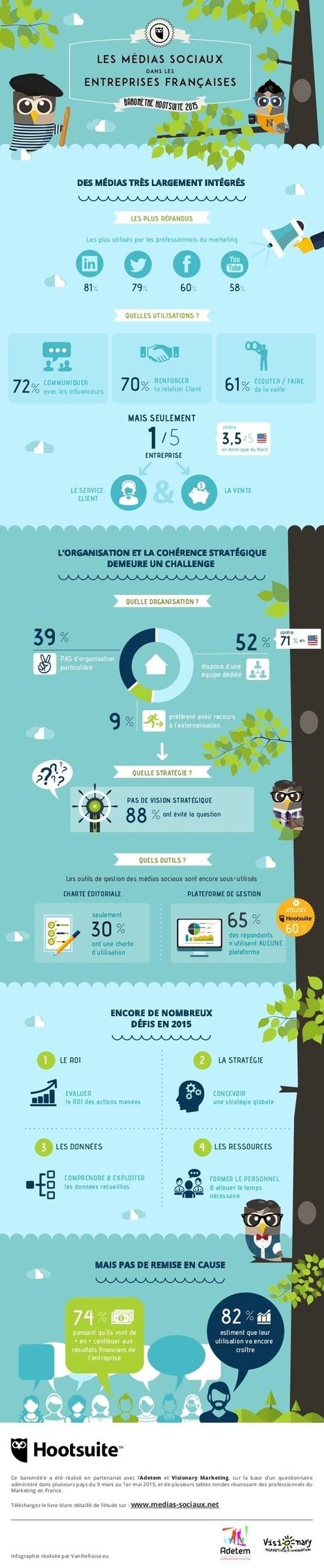 Social media | Les médias sociaux dans les entreprises françaises - Juillet 2015 (infographie Hootsuite) | Webmarketing infographics - La French Touch digitale en images | Scoop.it