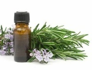 Essential Oils Protect Against Bacteria - Food Poisoning Bulletin | essentialoils | Scoop.it