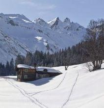 La flore des montagnes tres affectee en Europe par le ... - La Voix du Nord | Nature en vie | Scoop.it
