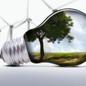 ¿Cómo trabajar la eficiencia energética en aula? | Eco Escuelas en Acción | Live different taste the difference | Scoop.it