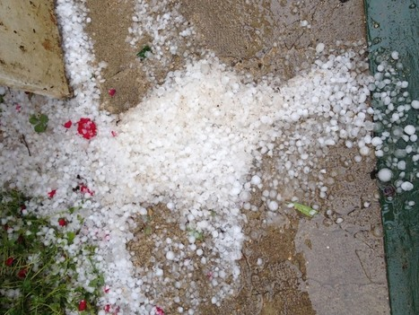 Violent hail in the vineyards – a report from Volnay… | Southern California Wine and Craft Spirits Journal | Scoop.it