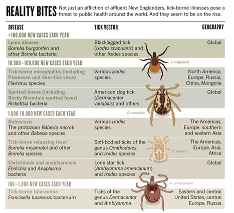The growing global battle against blood-sucking ticks | Sustain Our Earth | Scoop.it