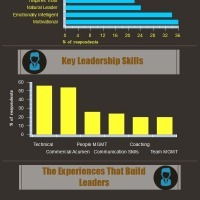 The Anatomy Of Leaders | Infographics for English class | Scoop.it