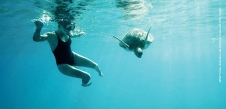 """Princess Cruises Launches 2015 """"Come Back New"""" Advertising Campaign 