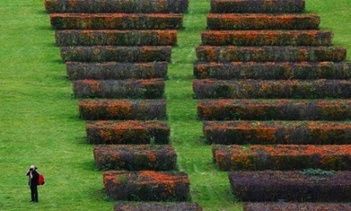 What is garden design? | Keeler Gardens:  Scoops | Scoop.it