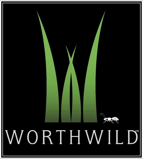 WorthWild - Crowdfunding and Crowdsourcing for the Environment | Environmental Education & Wildlife Conservation | Scoop.it