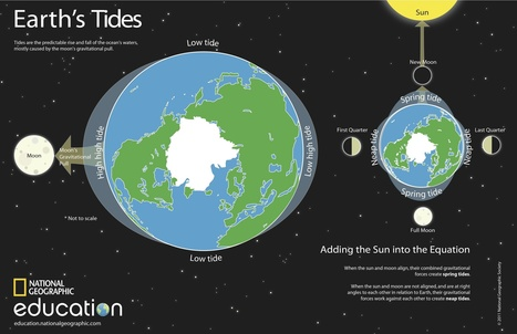 King Tides Rule | Nat Geo Education Blog | Earth, Moon, and Sun Relationships | Scoop.it