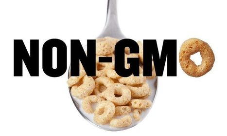 Non-GMO Is Going Mainstream | Searching for Safe Foods | Scoop.it