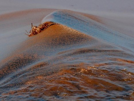Five Things The Gulf Oil Spill Has Taught Us About the Ocean | Geography Education | Scoop.it