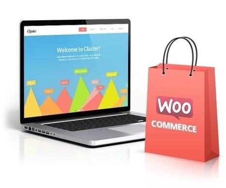 Local SEO Company | Local SEO Experts | Mr. Marketing - Charleston, SC | Web Designer | Scoop.it