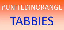 #UnitedInOrange tabbies adoption special at Cat Care Society ... | cats | Scoop.it