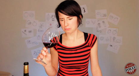 Why we don't like certain wines? A guide to help you understand why. | The Wine Hub | Wine lovers unite! #winelover | Scoop.it
