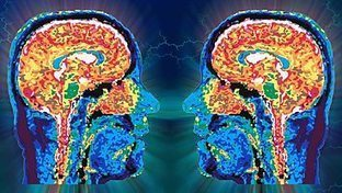 BBC Radio 4 - Afternoon Drama,  A love story told using the science of mirror neurons   Psychology   Scoop.it
