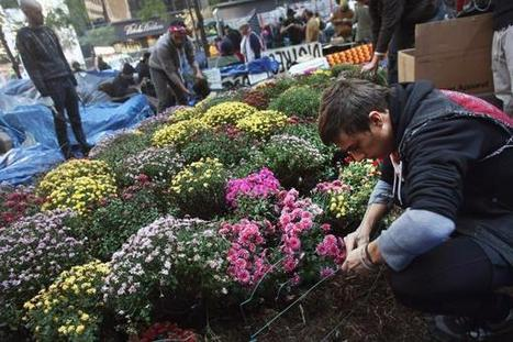 Guerrilla Gardeners Lift City Spirits | Gardening | Scoop.it
