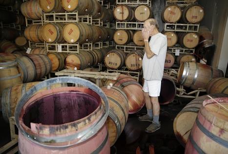 California Quake Means Big Damage For Napa Valley Wineries - NPR (blog) | 'Winebanter' | Scoop.it