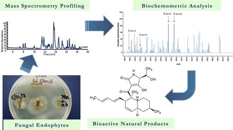 Biochemometrics for Natural Products Research: Comparison of Data Analysis Approaches and Application to Identification of Bioactive Compounds | Natural Products Chemistry Breaking News | Scoop.it