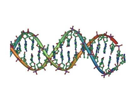 Researchers combat bias in next-generation DNA sequencing   Brain Tricks: Belief, Bias, and Blindspots   Scoop.it