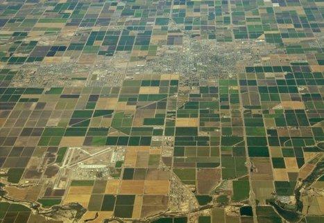 La sécheresse en Californie menace la sécurité alimentaire des Etats-Unis | Questions de développement ... | Scoop.it