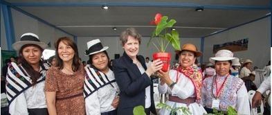 El Sello de Igualdad en el PNUD: Nos acercamos a Perú   Genera Igualdad   Scoop.it