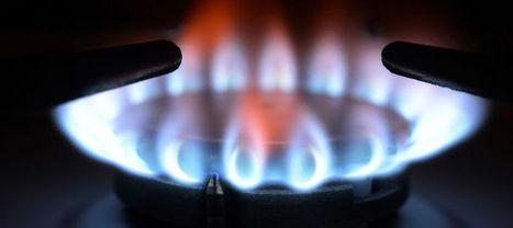 Comment l'UFC-Que Choisir va faire baisser les tarifs du gaz | 16s3d: Bestioles, opinions & pétitions | Scoop.it