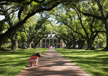 Snapshots From Past FewWeeks… | Oak Alley Plantation: Things to see! | Scoop.it
