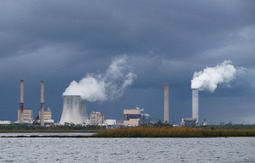 Nuclear Energy Kills More Birds than Wind Energy? | The Energy Collective | Sustain Our Earth | Scoop.it