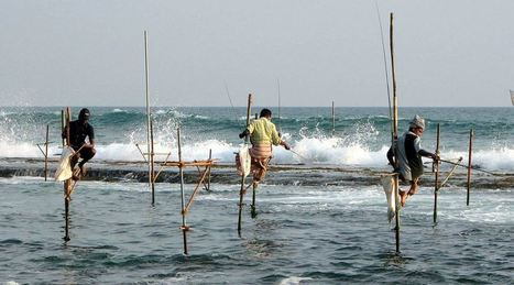 Why do we need ocean? | Environmental issues | Scoop.it