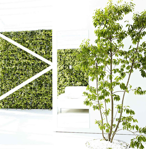 Exude a Fresh Aura in Your Homes with 20 Green Living Walls | Home Design Lover | Green Geek News | Scoop.it