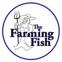 The Farming Fish | Aquaponics World View | Scoop.it