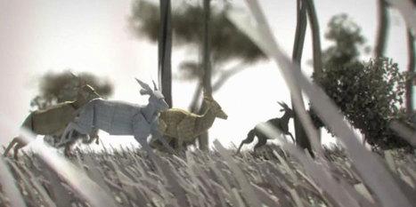 La WWF dévoile le monde de demain, où les animaux disparus sous le joug de l'Homme n'existeront plus que sur papier | Biodiversité & Relations Homme - Nature - Environnement : Un Scoop.it du Muséum de Toulouse | Scoop.it