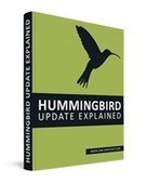 Google changes its algos – here's how the Hummingbird update effects your SEO | Google | Scoop.it