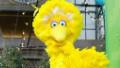 Will Big Bird be downsized? - CNN.com | Mouvement. | Scoop.it