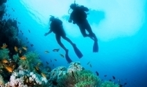6 Tips for Crowd Control While Diving | All about water, the oceans, environmental issues | Scoop.it