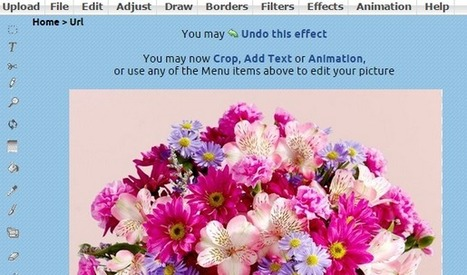 Online Photo Editors - Top 4 Online Tools That Works Like Photoshop | The Crazy Programmer | World Wide Tricks | Scoop.it