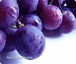 Resveratrol helps prevent metabolic diseases | The Basic Life | Scoop.it