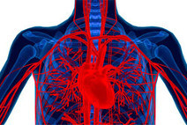 Tweeting our way to heart health - News | Cardiovascular Disease News | Scoop.it