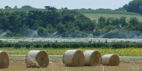 Sécheresse : restrictions d'eau dans six départements du Sud-Ouest | Agriculture en Dordogne | Scoop.it