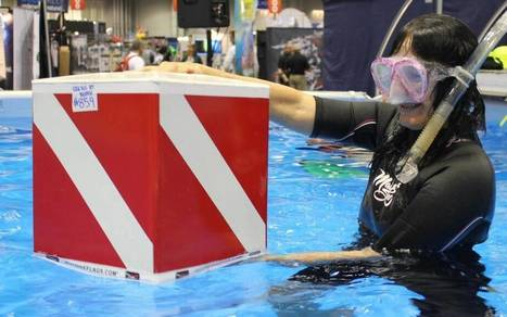 Divers-down flags now 'warning devices' under law | ScubaObsessed | Scoop.it