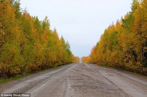 Russian prison chief 'steals a 30-MILE stretch of road' | Breaking World - African News | Scoop.it