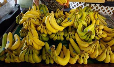 قشر الموز يخفض مستوى الكولسترول بالدم | Dental Laboratory Safety | Scoop.it